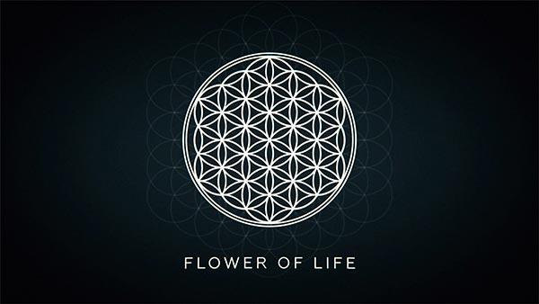 explainer-02-flower-of-life-600x338