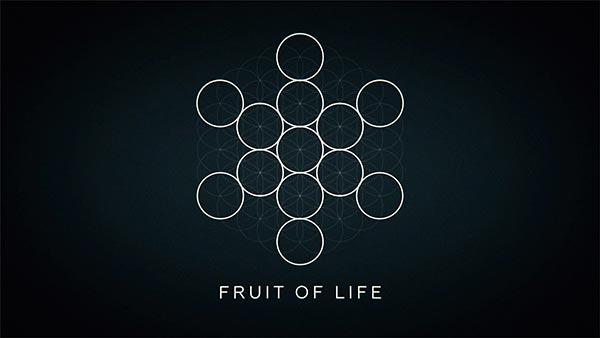 explainer-03-fruit-of-life-600x338