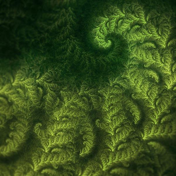 foliate-spiral-01-600x600